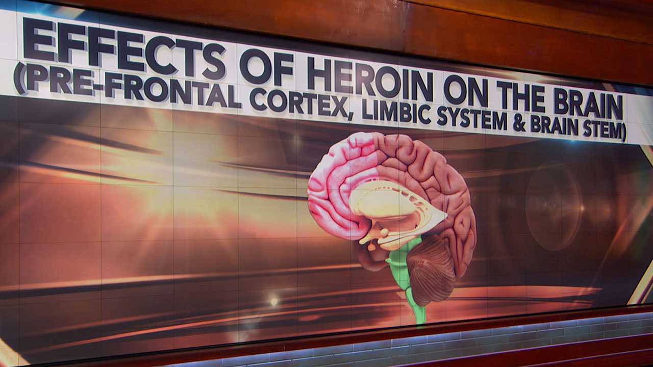 Effects Of Heroin On The Brain