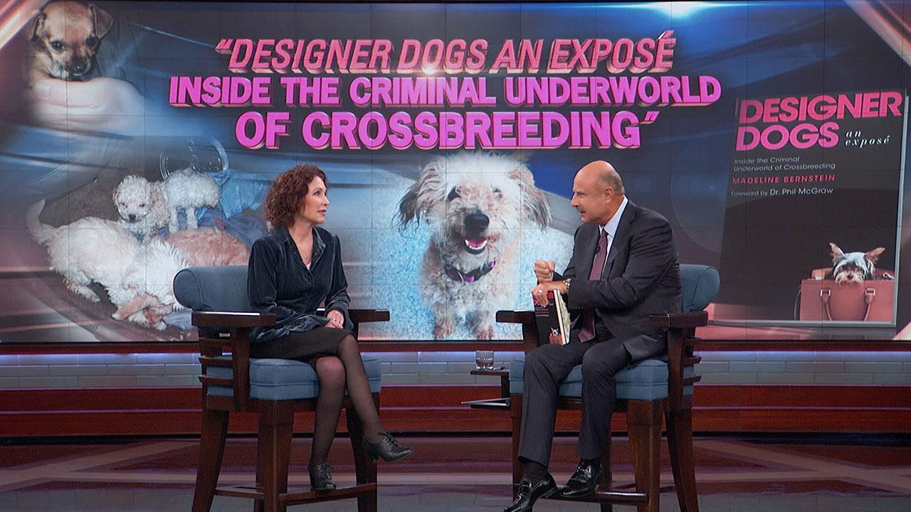 Why You Shouldn't Buy A Designer Dog